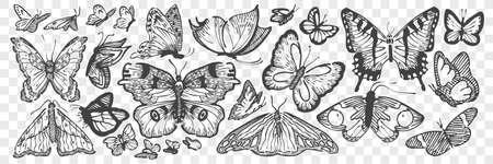 Hand drawn butterflies doodle set. 向量圖像
