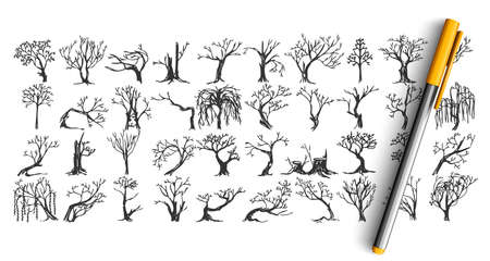 Trees doodle set. Collection of pen pencil ink hand drawn sketche templates patterns of frozen forest plants without leaves. Autumn and cold winter season coming symbols illustration. Illustration
