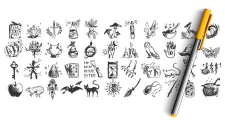 Halloween doodle set. Collection of hand drawn pencil sketches templates patterns of bats pumpkins owls creatures alchemic vodoo equipment. Illustration of all saints day and witchcraft symbols.