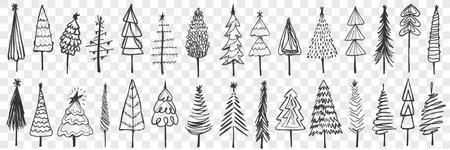 Coniferous trees drawn doodle set