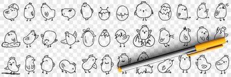 Small chicks on farm doodle set