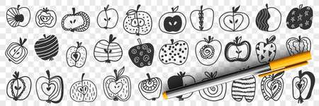 Apple fruits with patterns doodle set