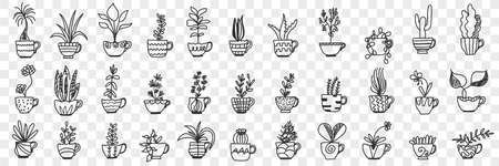 Plants in pots doodle set Illustration