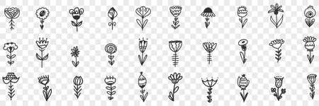 Natural flowers pattern doodle set