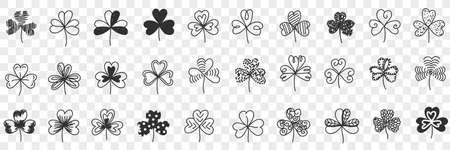 Clover plant pattern doodle set