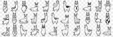 Funny alpacas animals doodle set 向量圖像