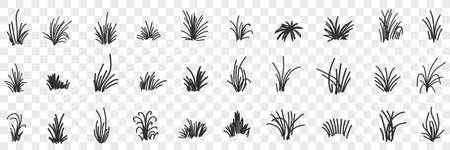 Grass natural pattern doodle set