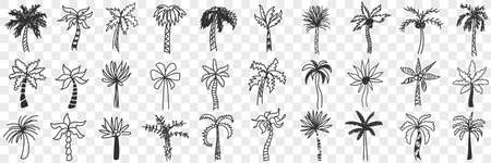 Exotic palm trees doodle set