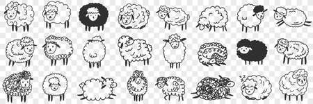 Funny white and black sheep animals doodle set
