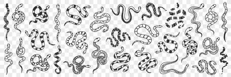 Various snakes of different patterns doodle set
