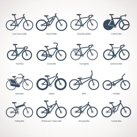 freeride: Tipos de bicicletas ilustraci�n vectorial