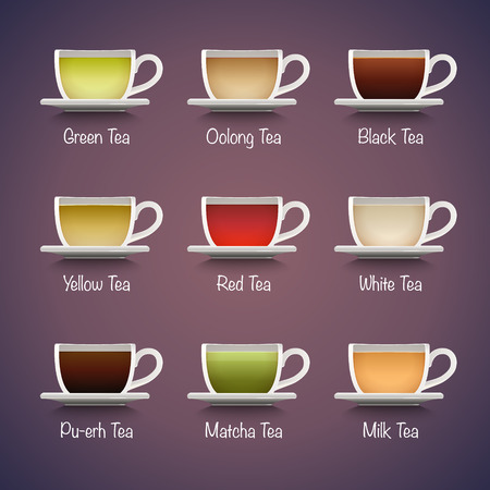 oolong: Tea Types Infographics. Vector tea drinks guide