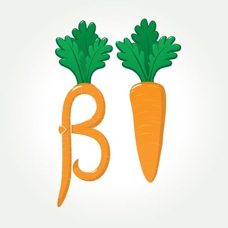 Healthy and tasty carrot provides you very useful Beta-Carotene (provitamin A) and many other vitamins Ilustracja