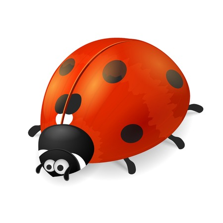 Ladybird on white background. Cute cartoon ladybug icon.