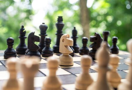 Chess horse figure standing in the middle of the chessboard Zdjęcie Seryjne - 131721482