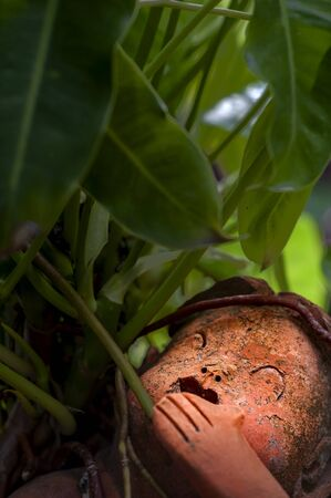 Old red clay doll facing the light under green leaves in curious concept for background. 写真素材