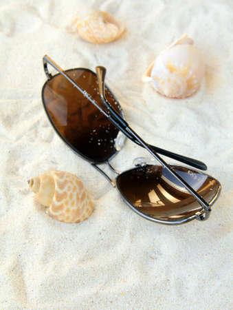 sunglasses beach: sunglasses, seashells on a white sand beach, vacation concept Stock Photo