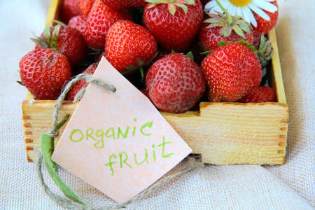 fresh ripe organic strawberries in a wooden box photo