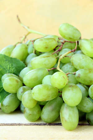 branch of green grapes on a wooden background Stock Photo - 10081491