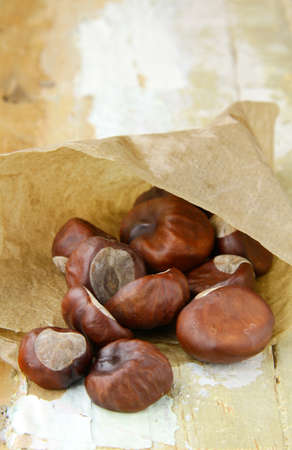 fresh chestnuts in brown paper bags photo
