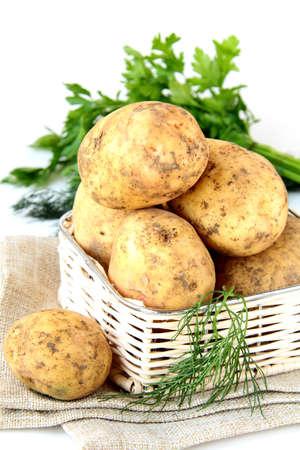 sackful: Basket of fresh organic potatoes Stock Photo