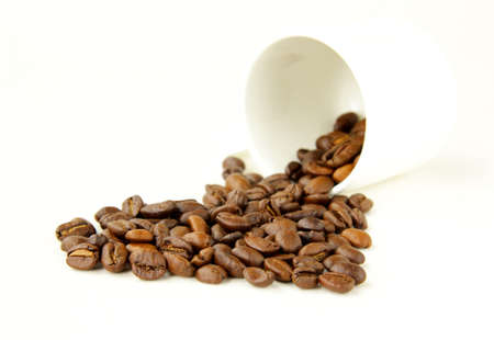 white cup with coffee beans  photo