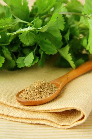 coriandrum sativum: cilantro en cuchara de madera