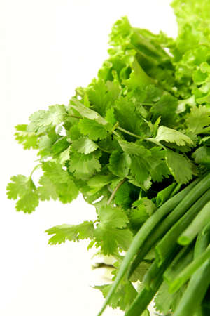 fresh green grass parsley dill onion herbs mix Stock Photo - 11549790