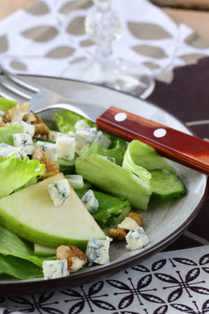 Salad with apple, cheese and walnuts Stock Photo - 12023610