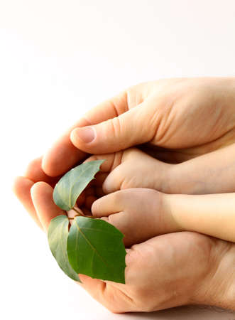 replant: fathers and babys hands holding plant