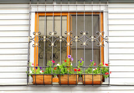 window on the wall, decorated with flowers and the lattice photo