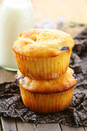 fresh homemade muffins and milk on the table Stock Photo - 15042313