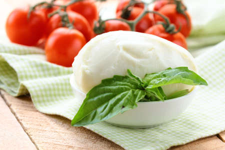 ball of mozzarella cheese with basil and tomatoes photo