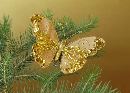 Christmas decoration  golden butterfly  on the branches of fir photo