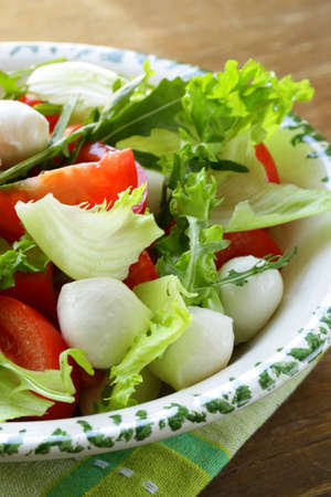 Salade de roquette, tomates et fromage mozzarella Banque d'images - 18081553