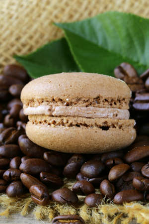 chocolate macaroon cookies on a background of coffee beans Stock Photo - 20456377