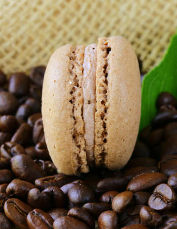 chocolate macaroon cookies on a background of coffee beans Stock Photo - 20494266
