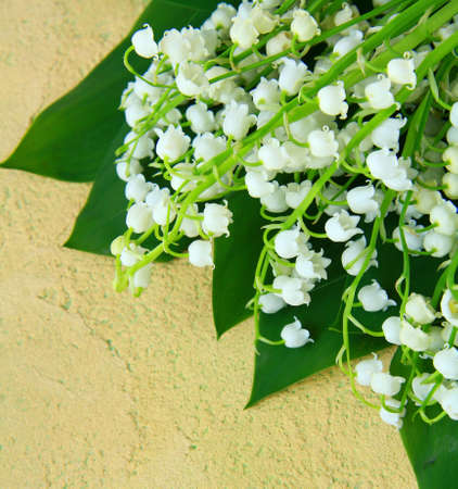 mayflower: bouquet of spring flowers lily of the valley