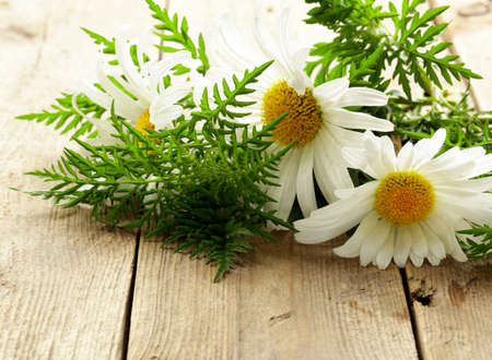 bouquet of fresh daisies on a wooden background photo