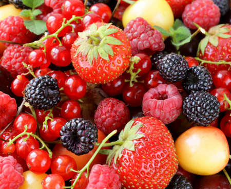berry assortment - raspberries, blackberries, strawberries, currants, cherries photo