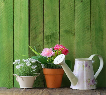 rustic still life watering can, flowers in pots, garden tools photo
