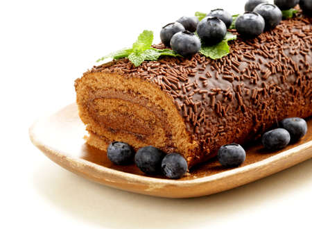 chocolate biscuit roll garnished with mint leaves and blueberries photo