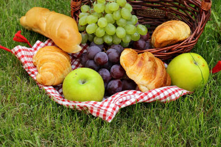 picknick: picnic on green grass with grapes and croissants