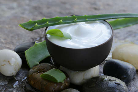 cosmetic cream lotion with natural green fresh aloe vera photo