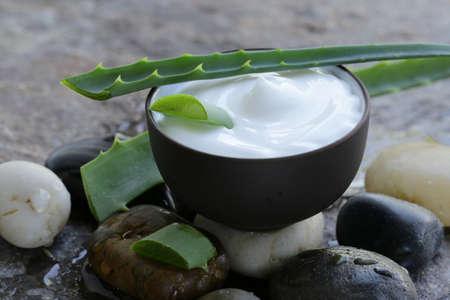 cosmetic cream lotion with natural green fresh aloe vera