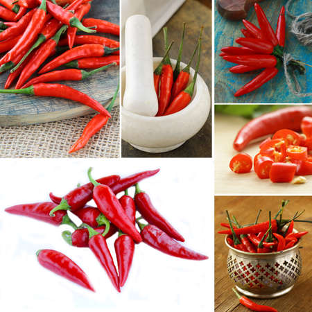collage of organic hot red chili pepper photo