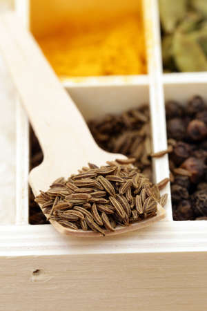 fennel seeds: macro shot fennel seeds, aromatic spice in a wooden spoon Stock Photo