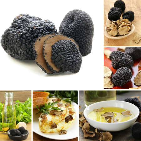 collage mushroom black truffle and flavored olive oil
