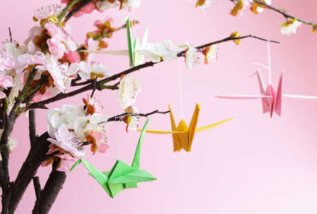 origami paper: colorful paper origami birds on flowering branches of cherry sakura Stock Photo