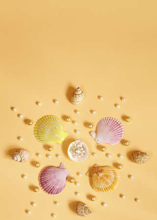 perl: composition of the different types of pearls and shells Stock Photo